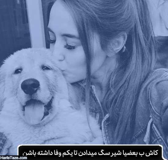 عکس سگ با دختر برای پروفایل