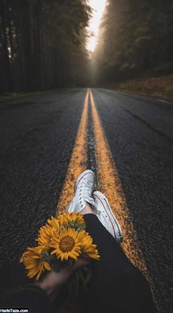 عکس پروفایل گل آفتابگردان و دست دختر
