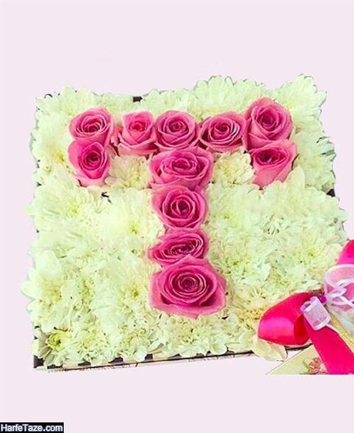 عکس حرف t در باکس گل