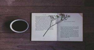 اشعار کوتاه و معروف از ۵ شاعر زن درباره زندگی و عشق