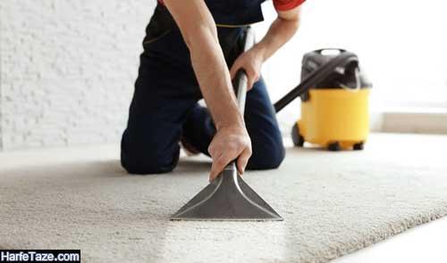 چگونه موی سر و حیوانات را ازروی فرش و مبل و موکت پاک کنیم