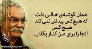گلچینی از بهترین اشعار سید علی صالحی با عکس نوشته