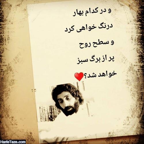 عکس نوشته جملات سهراب سپهری