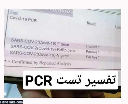 تفسیر تست و آزمایش PCR