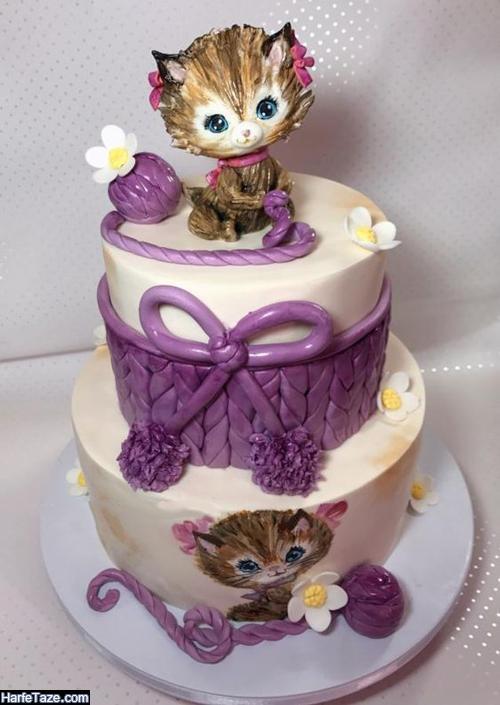 کیکهای تولد صورتی دخترانه با طرح های فانتزی گربه