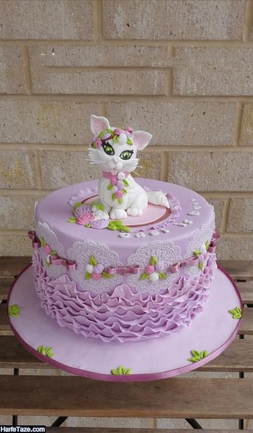کیک تولد جدید کیتی برای جشن تولد و دندونی