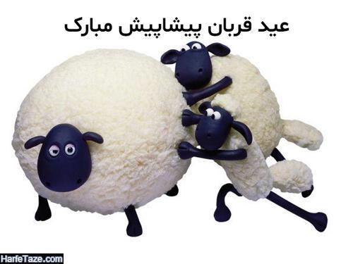 عید قربانی کردن نفس مبارک
