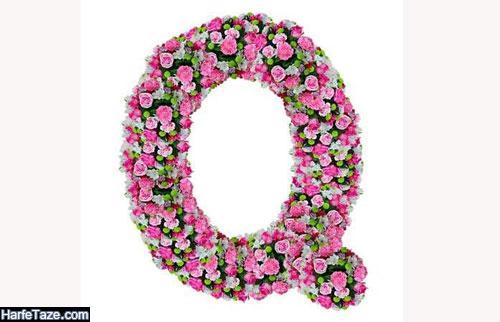 عکس گل با حروف انگلیسی Q