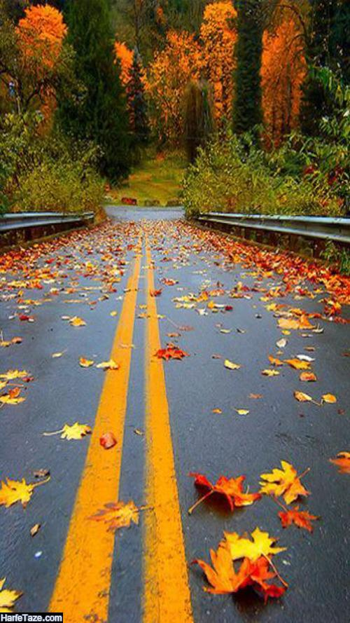 جملات زیبا درباره پاییز و خش خش برگ