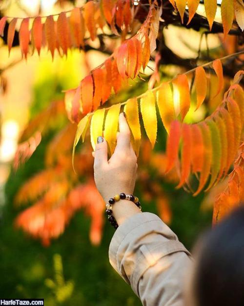 جملات پاییزی کوتاه و عاشقانه قشنگ