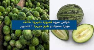 موارد مصرف و طبع و خواص میوه کمبوزه (خیرچا ،کالک)