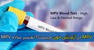 MPV در آزمایش خون چیست؟ تفسیر ساده MPV