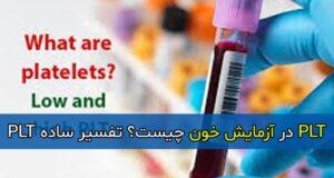 PLT در آزمایش خون چیست؟ تفسیر ساده PLT
