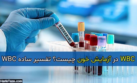 WBC در آزمایش خون چیست؟ تفسیر ساده WBC