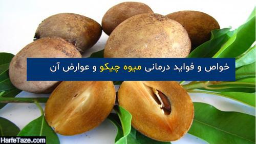 خواص میوه چیکو | موارد مصرف و فواید درمانی میوه چیکو + عوارض