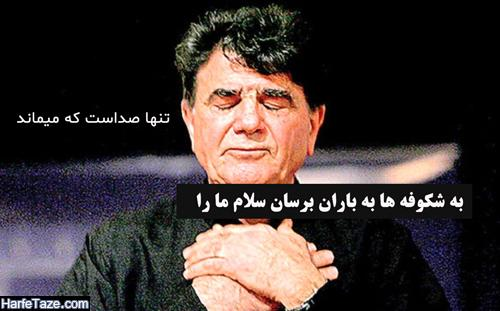 عکس پروفایل استاد شجریان + عکس نوشته محمدرضا شجریان با متن تسلیت