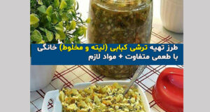 طرز تهیه ترشی کبابی (لیته و مخلوط) خانگی با طعمی متفاوت + مواد لازم