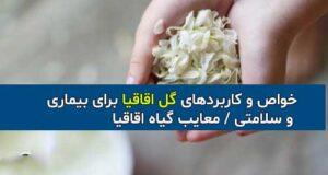 خواص و کاربردهای گل اقاقیا با عوارض و معایب آن
