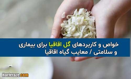 خواص و کاربردهای گل اقاقیا برای بیماری و سلامتی + معایب گیاه اقاقیا