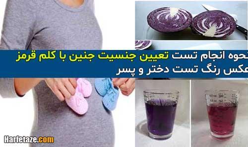 نحوه انجام تست تعیین جنسیت جنین با کلم قرمز +عکس رنگ تست دختر و پسر
