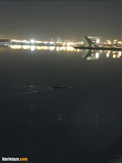 تمساح دریاچه چیتگر