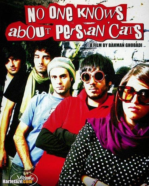 شروین نجفیان در فیلم کسی از گربه های ایرانی خبر ندارد