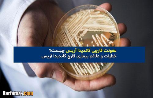 خطرات و علائم بیماری قارچ کاندیدا آریس + نحوه درمان عفونت قارچی کاندیدا آریس
