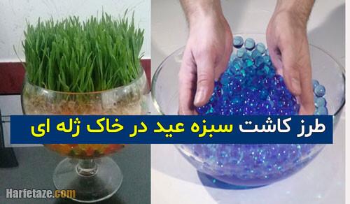 آموزش کاشت سبزه عید در خاک ژله ای با انواع دانه ها + مدل سبزه با خاک ژله ای