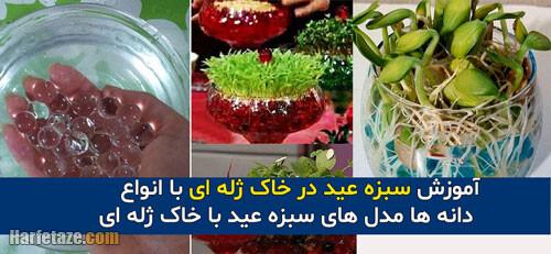 طرز کاشت سبزه عید با خاک ژله ای
