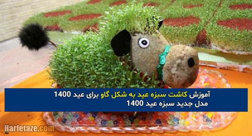 آموزش کاشت سبزه عید به شکل گاو برای عید 1400 + مدل جدید سبزه عید ۱۴۰۰