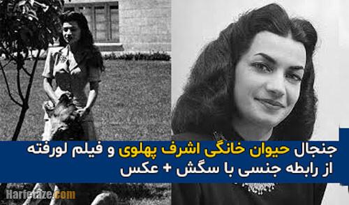 جنجال حیوان خانگی اشرف پهلوی و فیلم لورفته از رابطه جنسی با سگش + عکس و فیلم