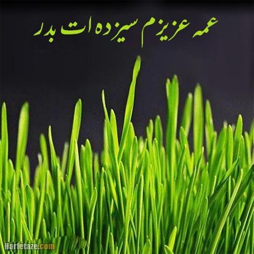 عکس نوشته تبریک سیزده بدر به عمه 1400