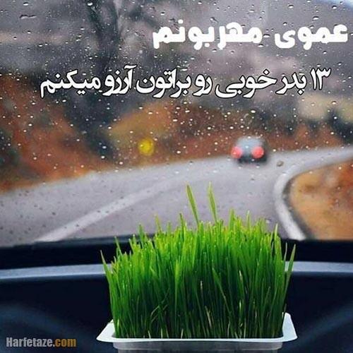 عکس نوشته تبریک سیزده بدر به عمو 1400