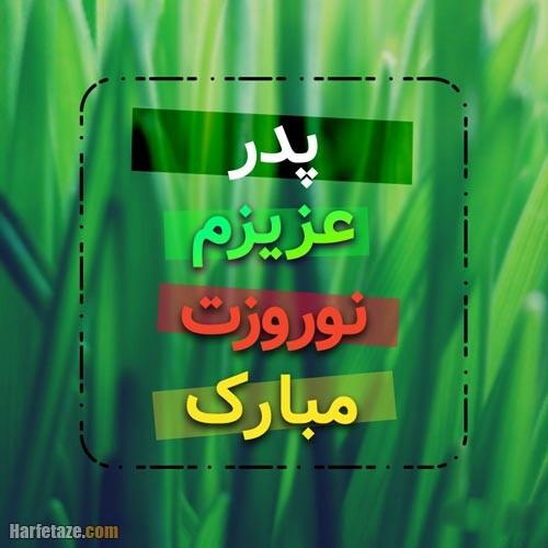 عکس پروفایل تبریک عید نوروز به پدر