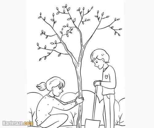 عکس یک دختر در حال کاشت درخت