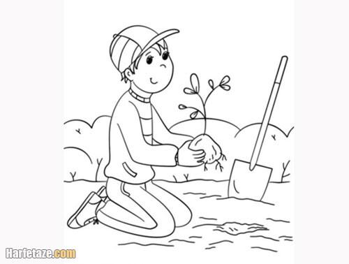 عکس یک پسر در حال کاشتن نهال درخت