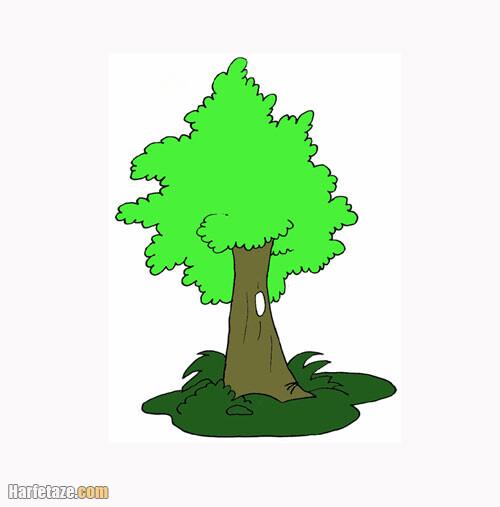 درخت رنگ شده برای ایده کشیدن