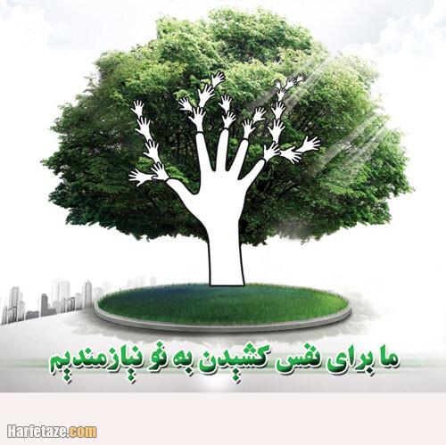 دانلود نقاشی کاشت درخت برای روز درختکاری