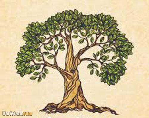 طرح گرافیکی روز درختکاری برای پیش دبستان