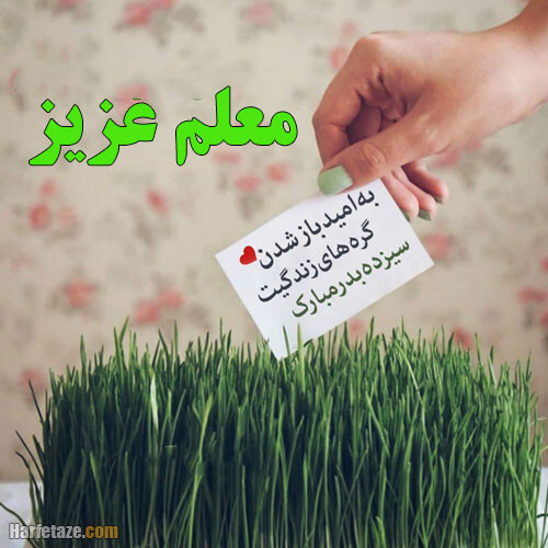 عکس نوشته استادجان 13 بدرت مبارک