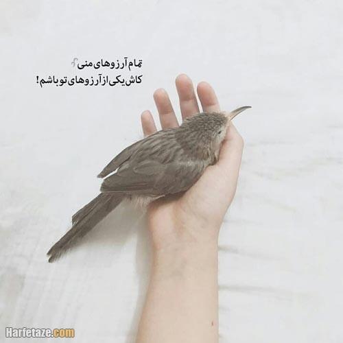 عکس نوشته آرزو