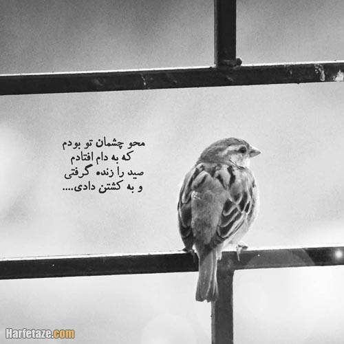 عکس نوشته چشمانت