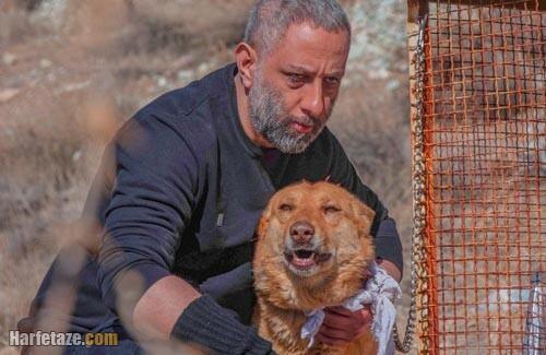 خلاصه داستان فیلم سگ زرد