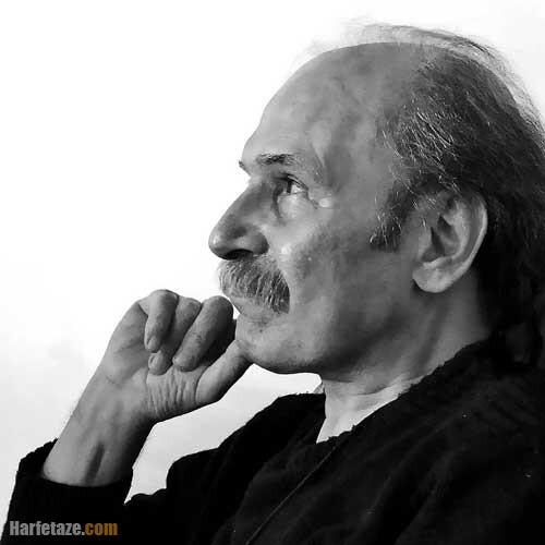 بیوگرافی و عکس های محمود نیکبخت شاعر و مترجم + درگذشت و آثار