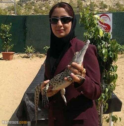 مژگان پرورش دهنده کروکودیل در ایران