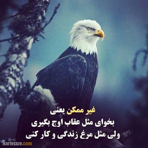 عکس نوشته عقاب 1400