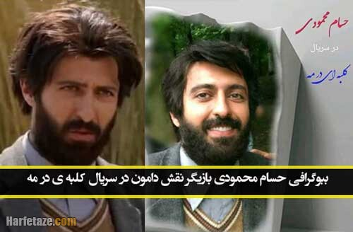 بازیگر نقش دامون در سریال کلبه ای در مه کیست+ بیوگرافی و آثار حسام محمودی بازیگر