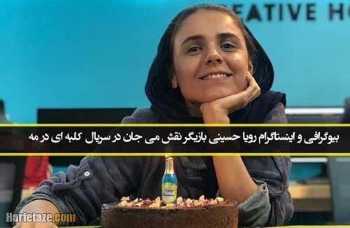 بازیگر نقش می جان در سریال کلبه ای در مه کیست؟+ بیوگرافی و آثار هنری رویا حسینی بازیگر