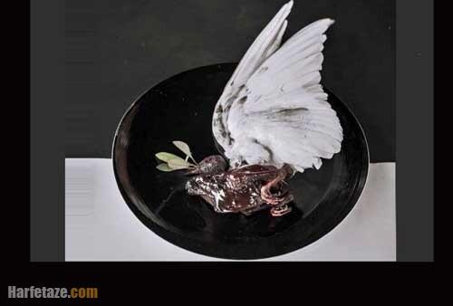 عکس و فیلم / سرو بی رحمانه یک کبوتر در یک رستوران با بالهای پردار را ببینید