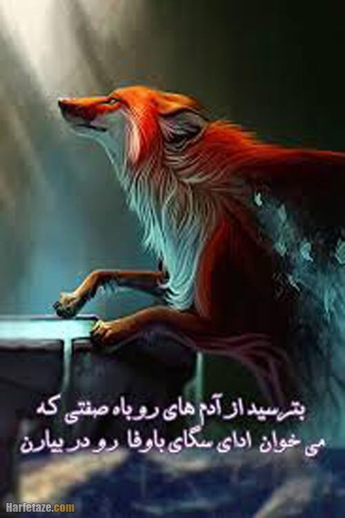 عکس نوشته روباه 1400